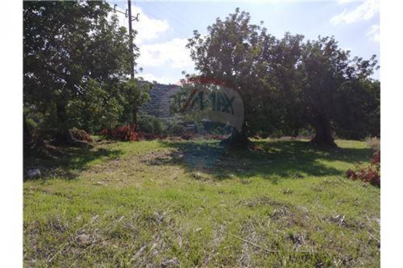 Land for Sale in Spitali, Limassol, Cyprus