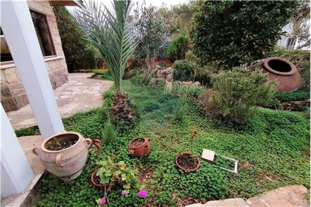 House for Rent in Palodeia, Limassol, Cyprus