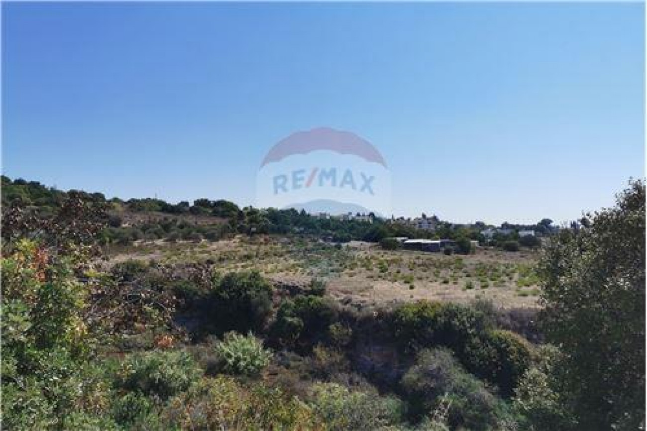 Land for Sale in Tala, Paphos, Cyprus