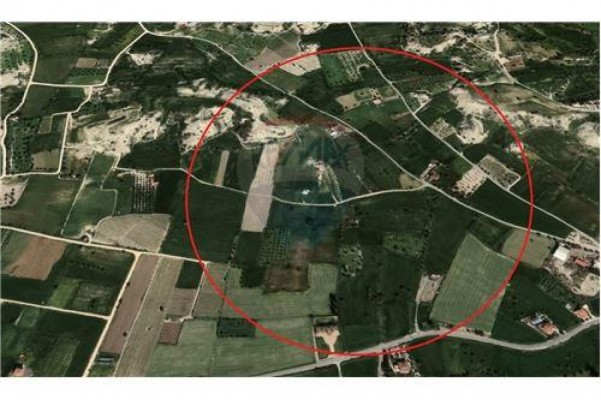 Land for Sale in Mazotos, Larnaka, Cyprus